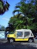Neumáticos desinflados del vehículo de la isla por St. Vincent de Bequia de las palmeras y Imágenes de archivo libres de regalías