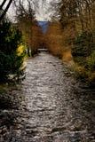 Neumagen river in Staufen im Breisgau Schwarzwald germany royalty free stock images
