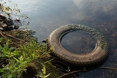 Neumático de coche en el agua Imágenes de archivo libres de regalías