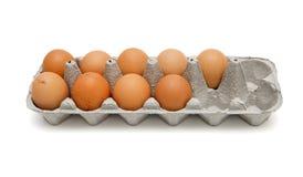Neun braune Eier im Kasten getrennt Lizenzfreie Stockfotos