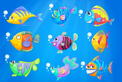 Neun bunte Fische unter dem tiefen Ozean Stockfotografie