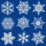 Neun fabelhafte ursprüngliche Schneeflocken Lizenzfreie Stockfotos