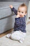 Neun Monate alte Baby, die auf dem Boden sitzen Stockbilder