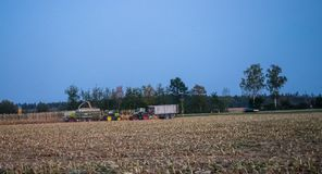 Farners bringing the corn crop in royalty free stock photos
