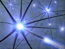 Neurônios Foto de Stock Royalty Free
