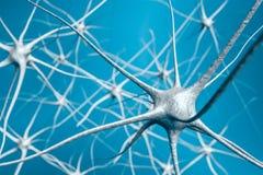 Neurônios no cérebro, ilustração 3D da rede neural Fotografia de Stock Royalty Free