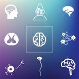 Neural brain back Royalty Free Stock Photo