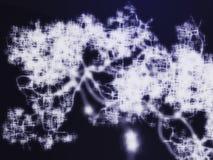 Neural network Royalty Free Stock Photos