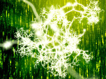 Neural network Royalty Free Stock Images