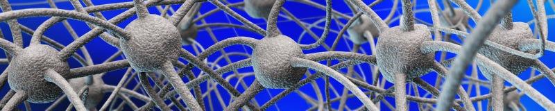 Neural network. Nerve nodes, medical background Stock Images