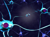 Neural synapse. 3D illustration of a neural synapse Royalty Free Stock Photo