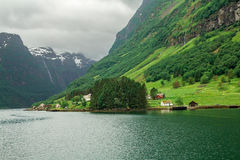 Neuro fjord Royaltyfri Fotografi