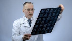Neurochirurgo professionista che controlla immagine del cervello di RMI, trattamento di emicrania, trauma fotografia stock libera da diritti