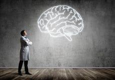 Neurologie- und Gehirnforschungskonzept stockbilder