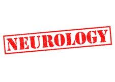 neurology Imagens de Stock