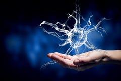 Neurology study Stock Images