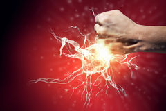 Neurology study concept Royalty Free Stock Images