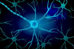Neuron Stockfoto