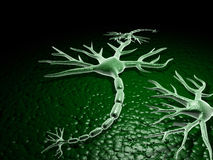Neuron Royalty Free Stock Images