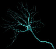Neuron. 3D render of neuron cell Royalty Free Stock Images