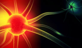 Neuron. Active nerve cell Stock Photo