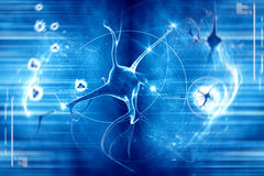 Neuron in blue background. Digital illustration of a neuron in blue background Stock Illustration