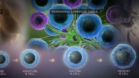 Neuron Brain Cell 3D übertragen Schleifen-Animation mit Transparenz lizenzfreie abbildung