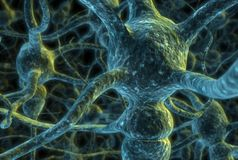 Neuron cells Royalty Free Stock Photography