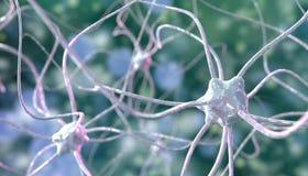 Neuron nerv- nätverk, nervknutpunkt, arkivfoto