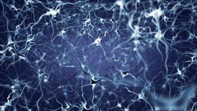 Neuron network activity Stock Photos
