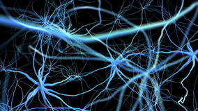 Neuron network with electric impulse. Flight through brain.