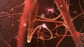 Neuron network. Neurons structure sending electric impulses and communicating each other. 3D animation