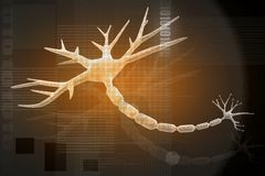 NEURON ON orange Royalty Free Stock Image