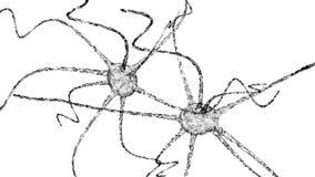 Neuron system wireframe mesh