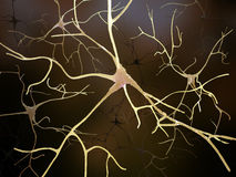 Neuronal connections inside the human brain Stock Photography
