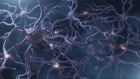 Neuronal and synapse activity animation. Neurons in the head, neuroactivity, synapses, neurotransmitters, brain, axons. Electrical
