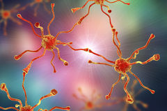 Neuronal synapses, brain cells Stock Photo