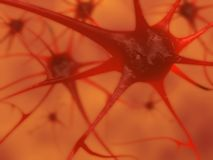 Neuronas Imágenes de archivo libres de regalías