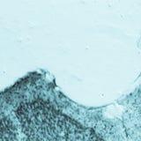 Neuronas hippocampal del cerebro de la rata Imágenes de archivo libres de regalías