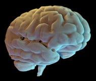 Neuronas sinapsis, enfermedad del cerebro Imagenes de archivo