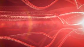 Neuronas y sistema nervioso  Imágenes de archivo libres de regalías
