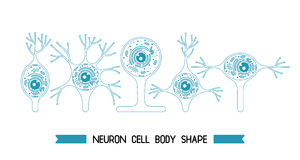 Neurone komórki ciało ilustracji