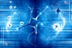 Neurone nel fondo blu Fotografie Stock