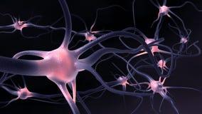 Neuronen royalty-vrije illustratie