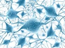 Neuronen Royalty-vrije Stock Afbeeldingen