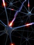 Neuronen (de uitwisseling van ideeën) Stock Afbeeldingen