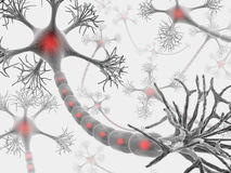 Neuronen (der Geistesblitz) Lizenzfreies Stockfoto