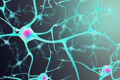 Neuronen im Gehirn mit einem Kern nach innen auf schwarzem Hintergrund Abbildung 3D Stockfoto