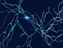 Neuronen, synapsen, neurale netwerkkring van neuronen, hersenen, degeneratieve ziekten, Parkinson vector illustratie