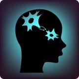 Neurones Image libre de droits